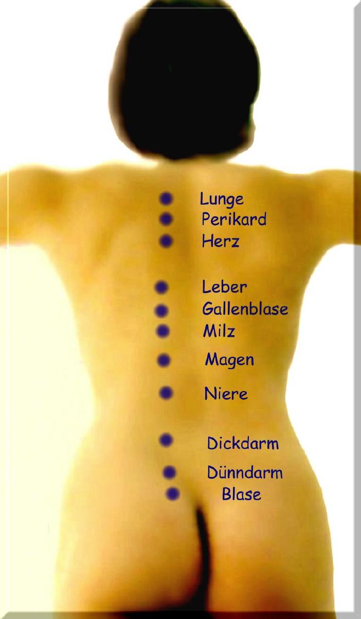 Rückenschmerzen?